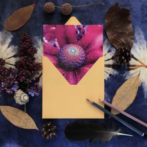 """Postkarte """"Fibonacci Spirale"""""""